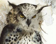 Owl painting owl watercolor print owl art print by amberalexander