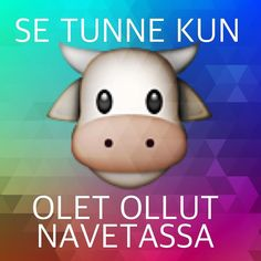Tai pikemminkin se haju. (eläinihmiset sanoo että tuoksu) Vuorovaikutteinen Live-streamaus navetan vintiltä on hoidettu. #mustiala #virtuaalikyla #t #potkukelkkacom