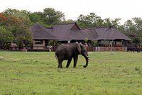 Private Game Reserve in het Kruger Park