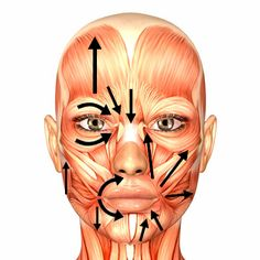 Logopèdia i Estimulació Cognitiva: Rehabilitació de la Paràlisi Facial Perifèrica
