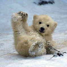 in de sneeuw | **MIA PLAATJES CARROUSEL**