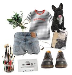 """Dog lover #7"" by hopewillis on Polyvore featuring Dr. Martens, Levi's, Plane, CASSETTE and Topshop"
