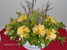 Yellow Gerber Daisies : Simply beautiful and bright!