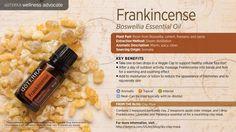 wa-frankincense.jpg (3000×1689)