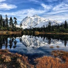 Shuksan, not so easy to pronounce but super easy to appreciate. PC: @nickbecerra - Thanks for sharing and making us drool #back40hikes