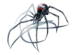 01dce4cdd9050e703f4b565634d7fc1e--spider-drawing-spiders.jpg