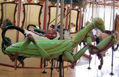 The 2010 Carousel Works Carousel at  Calgary Zoo, Botanical Garden & Prehistoric Park