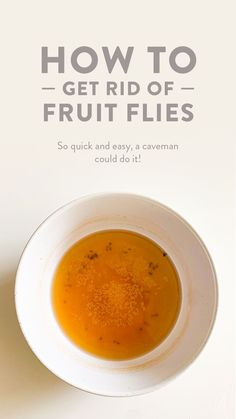 If you buy fresh fruit and don't refrigerate it, likely it will attract fruit flies ⏤ it's only natural! Here's how to make an effective fruit fly trap at home. fly trap How to get rid of fruit flies Apple Sider Vinegar, Raw Apple Cider Vinegar, What Attracts Fruit Flies, Fruit Fly Catcher, Fruit Fly Killer, Fruit Flies In House, Vinegar Cleaner, Fresh Fruit, Food Hacks