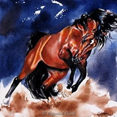 I would love to have this piece! Looks like my horse! I'd like it much bigger though! Crystal is very talented!  Detonate by Crystal Cook Watercolor ~ 6 x 6