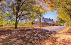 Deloraine Cottage, Autumn, Tenterfield.  Photo by Kym Howard