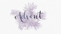 Making Advent Count - The Village Church | Advent | Design