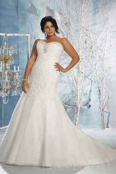 Fit and Flared Sweetheart Organza Lace Plus Size Wedding Dress