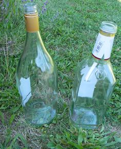 You might want to save your leftover glass bottles when you see what this mother and daughter made for their garden!