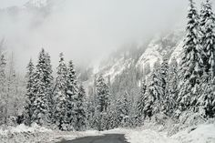 Winter Wonderland by Robert Dickinson Photographic Print on Wrapped Canvas