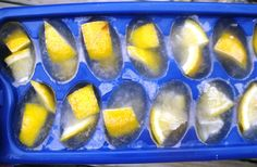 Lemon & Vinegar Garbage Disposal Cleaner Cubes (& other uses for ice trays)