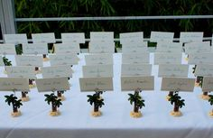 Palm Tree  Place Card Holder Favors