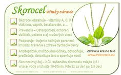 Skorocel kopijovitý – silná nenápadná bylina | Peknetelo.eu Raw Food Recipes, Healthy Recipes, Glycemic Index, Dieta Detox, Nordic Interior, Wellness, Organic Beauty, Planer, Natural Health