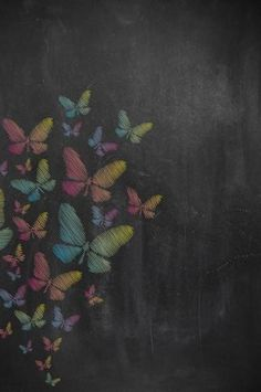2204 Chalkboard Butterfly Backdrop - Backdrop Outlet - 1