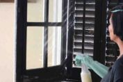 Aunque muchos expertos sostienen que no es posible acelerar el crecimiento del cabello, existen varios remedios caseros populares que han pasado de generación en generación para ello. La única manera de comprobar si realmente funcionan es probarlos.    Ingredientes + 1 huevo 1 cucharada de most Health, Natural, Home Decor, Cleaning Tips, Shape, Paper Balls, Home Remedies, Home Tips, Homemade Face Pack