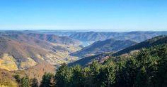 Wandern am Welterbesteig Mühldorf-Maria Laach   Wachau Inside Grand Canyon, Nature, Travel, Hiking, World, Naturaleza, Viajes, Destinations, Grand Canyon National Park