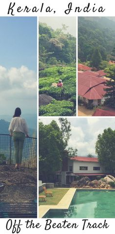 A River House and Tea in Kerala, India: Off the Beaten Track. Windremere Hotel Review, plus Tips for tea plantations in India, India travel inspo, luxury India and much more! #India #Kerala
