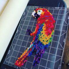 Parrot perler beads by skullfire21811