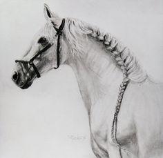 i would braid my horses main this way :)