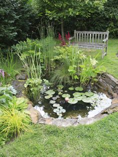 Water Garden Design A beautiful wildlife pond will attract a whole host of beneficial animals, birds and insects. Make one with sloping sides, to allow easy access for creatures to come and go, and leafy edges that offer habitat and cover. Ponds Backyard, Backyard Landscaping, Landscaping Ideas, Pond Design, Garden Design, Landscape Design, Small Water Gardens, Diy Pond, Pond Fountains