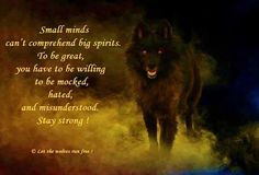I dont care how smart you think you are, im a free spirit, if you cant walk in the fire, you cant walk with me! Wolf Qoutes, Lone Wolf Quotes, Wolf Spirit, My Spirit Animal, Dalai Lama, Wolf Stuff, Warrior Quotes, Wolf Love, She Wolf