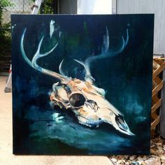 IN PROGRESS / Still Life with Deer Skull / 36″ x 36″ / oil on canvas   First session of a still life with a the deer skull I picked up the other day. 36 x 36