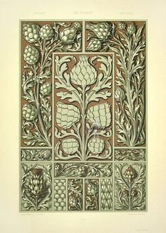 """Thistles"" from Anton Seder Die Pflanze Art Nouveau Prints 1890"