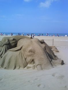 Elephant awesome Sand Art