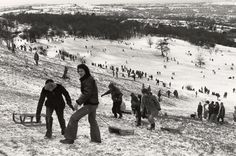 Sledging on the Lickey Hills in the City Of Birmingham, Birmingham England, Park Pictures, Old Pictures, 2nd City, Local Attractions, West Midlands, Where To Go, Great Britain