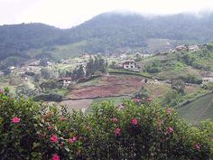 La Colonia Tovar, zona agrícola y turística - Aragua, Venezuela