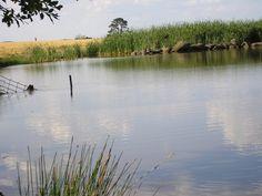 our dam