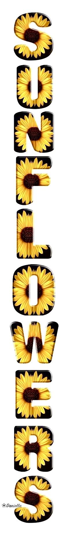 Sunflower Garden, Sunflower Fields, Growing Sunflowers, Harvest Time, Have A Blessed Day, May Flowers, Love You All, Summer Fun, Flower Power
