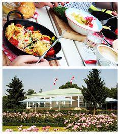 #ServusTV-Frühstückstipp: Klassisches Ambiente und am #Sonntag gibt es Live-Musik in der JAUSENSTATION in Schönbrunn. #ruehrei #eierspeise #kipferlfruehstueck und #kaffee, Kritik und Details dazu auf Servustv.com. #ESSEN