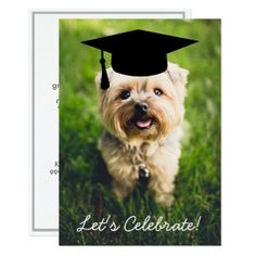 #Funny Dog Photo Graduation Party - Use Your Photo Card - #yorkshire #terrier #puppy #terriers #dog #dogs #pet #pets #cute #yorkshireterrier