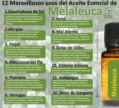 Awaken Yourself with Top 7 Melaleuca (Tea Tree) Oil Benefits. My Doterra, Essential Oil Uses, Doterra Essential Oils, Young Living Essential Oils, Oregano Oil Benefits, Esential Oils, Diffuser Blends, Tea Tree Oil, Natural Beauty Products
