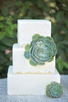 succulent cake, photo by Amy & Jordan Photography http://ruffledblog.com/paradise-valley-wedding-inspiration #weddingcake #cakes