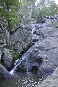 Cunningham Falls State Park is a state park located west of Thurmont, Maryland, USA, on Catoctin Mountain.
