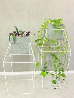 Inspired by diamonds, these modern white metal stands are large, and have extra supports that allow plants to grow and wrap organically around the structure.