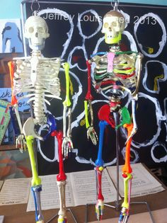 Coloured skeletons!