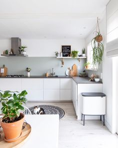 Witte Ikea keuken met groene planten.