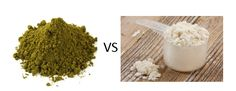 What are the pros and cons for hemp protein vs whey protein? Read this article where we take a look at the debate and break down the benefits of both.