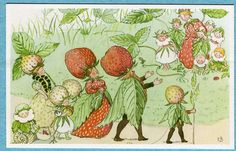 G1246 Strawberry headed people postcard, Elsa Beskow #21 Jordgubbsfamiljen | eBay. $9.99