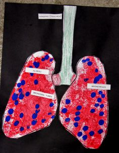 Breathe In, Breathe Out... (Respiratory System Activities)