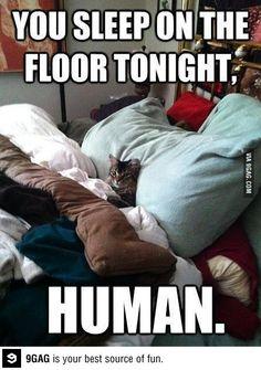 9GAG - You sleep on the floor tonight!