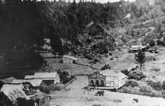 GOLD-FIELD BANDITS' STOLEN LOOT still hasn't been found -- but it was last seen leaving this little mining town in the custody of a gang of robbers called the Triskett Gang. We'll probably never know the real story, so the legend will have to do: http://offbeatoregon.com/o1106d-gold-field-bandits-loot-has-never-been-found.html