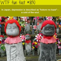 How Japan describes depression - WTF fun facts Wtf Fun Facts, True Facts, Funny Facts, Random Facts, Odd Facts, Fascinating Facts, Crazy Facts, Amazing Facts, Gi Joe